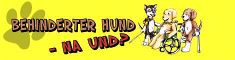 Banner behinderter Hund