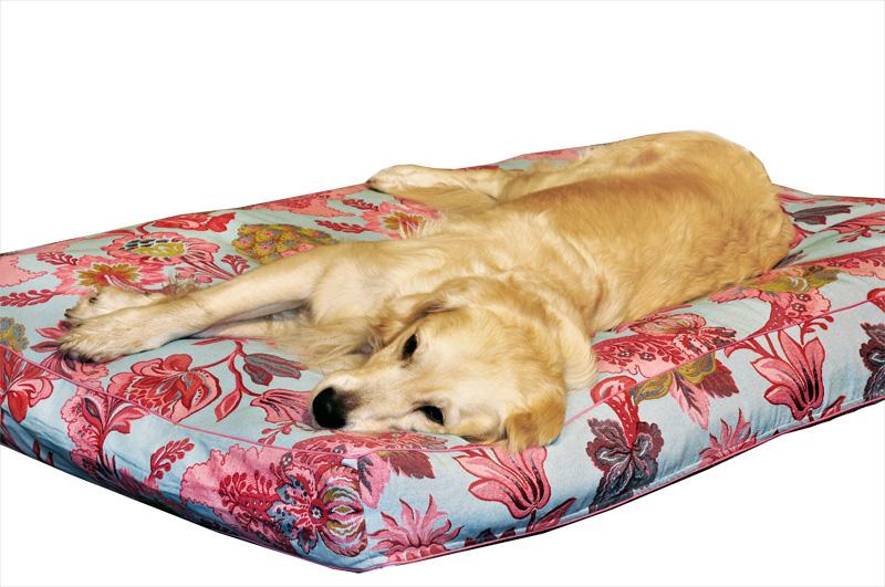 hundebett haushund ohne maulkorb. Black Bedroom Furniture Sets. Home Design Ideas