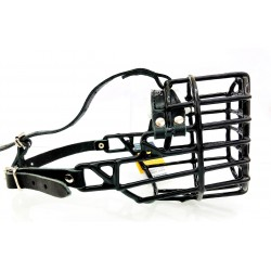 Cocker Spaniel/Fox Terrier - w - schwarz ummantelt CH515