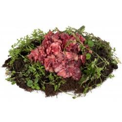 Kopffleisch Rind 500g
