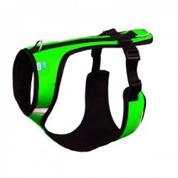 Speed Geschirr - XS - grün