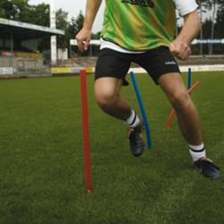 Flexible Slalomstange 55cm