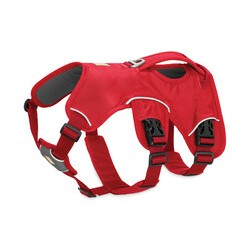 Web Master™ Harness - Red Currant - XXS