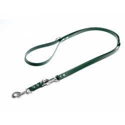 Biothane verstellbare Leine 19mm grün 250cm