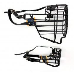 American Cocker Spaniel - m - schwarz ummantelt - ohne Stirnriemen CH782