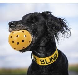 Lochball für blinde Hunde