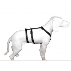 NoExit Hundegeschirr® - 20mm/55-75cm - schwarz