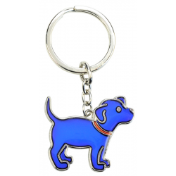 Schlüssel Stimmung Farbwechsel Hund