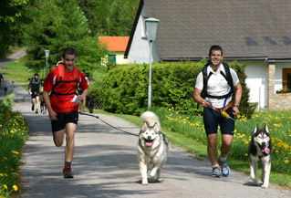 Dogtrekking mit dem Hund unterwegs