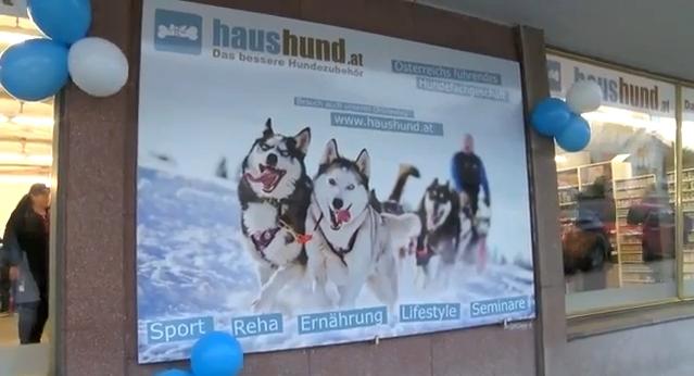 Haushund Neufeld