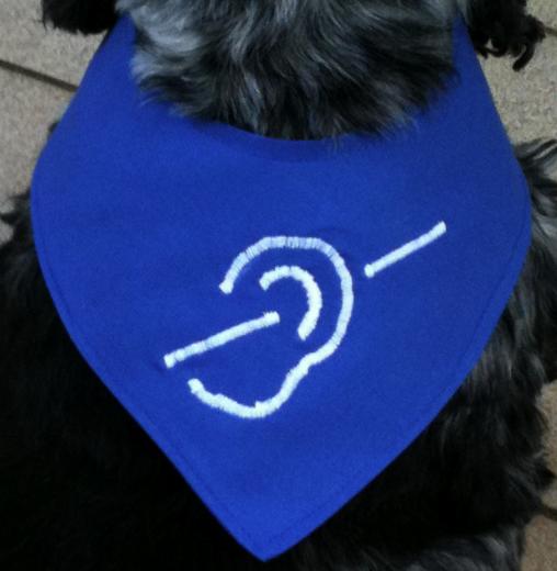Hund mit blauem Gehörlosen-Halstuch