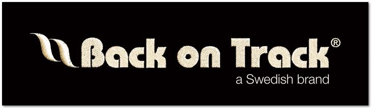 Logo Schriftzug Back on Track