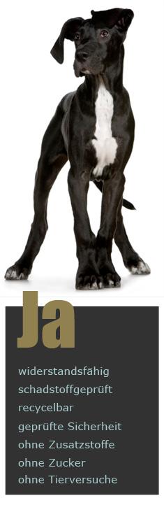 Philosophie Haushund