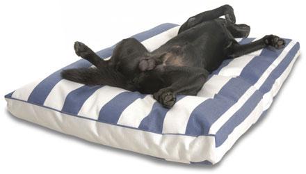 Traumhund Hundebetten